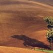 jesenné polia