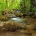 meandre rieky Nitry