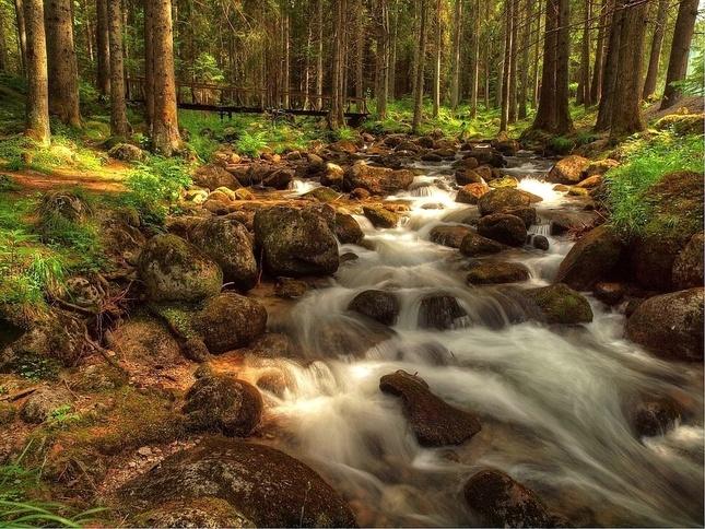 Demänovský potok