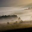 Lehota  v  hmle