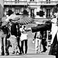 milovníčka holubov