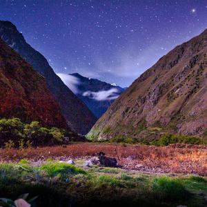 Cesta Inkov