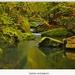 Rieka Kamenice