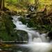 Príbeh potoka