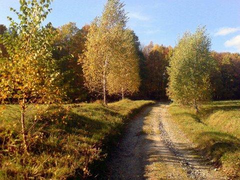 jesenná idyla