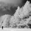 Malofatranská zimná