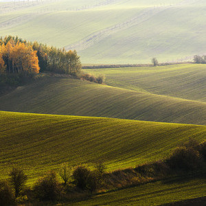 Moravské vlny