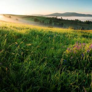 Svieže ráno v Lesnej