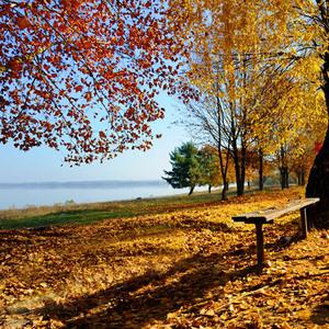 Zemplínska Šírava v jeseni