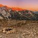 Monte Cristallo & Croda Rosa