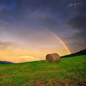 --Rainbow--