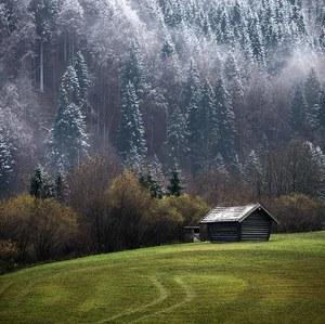 --Winter Lines--