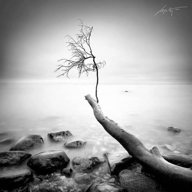 --Lost--