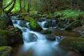 Vodný tok