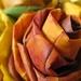 ruža z lístia