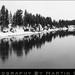 Fishing Bridge, Yellowstone