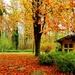 Jesenná.