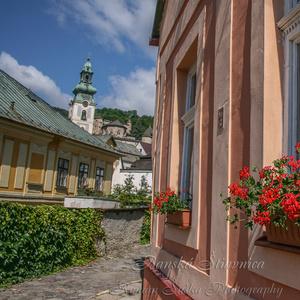 Banská Štiavnica Ružová-kvetová.