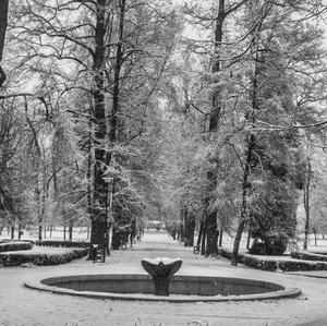 Park v bielom šate.