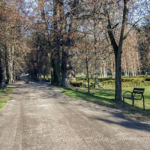 Jeseň v Parku ....