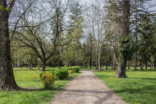 Jarná prechádzka parkom