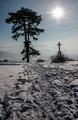 Cestou zimy (3)