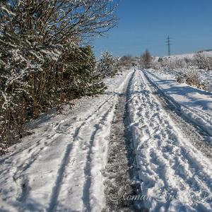 Cestou zimy (2)