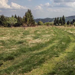 Cestou - necestou k prírode