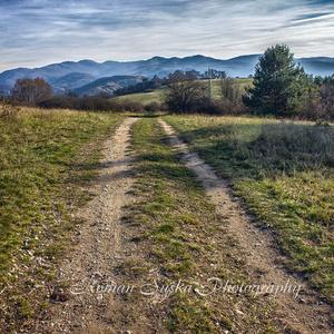Cestou na Šibeničný Vrch