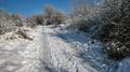 Cestou zimy