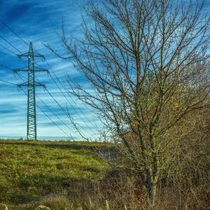 Strom a stĺp - Šibeničný Vrch