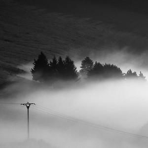 ... v rannej hmle