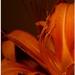 oranžová nálada