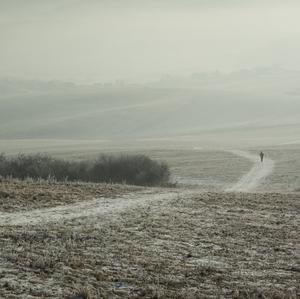 Winter++