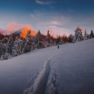 Zima v Malej Fatre