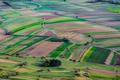Poľnohospodárska :-)