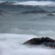 ticho v hmle