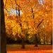 Jesenna symfonia