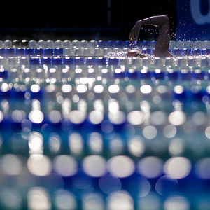 plavání 2