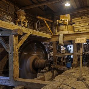 V staručkom mlyne