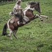 Keltská jazdkyňa