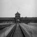behind the walls of Birkenau