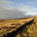 ramshaw ridge.