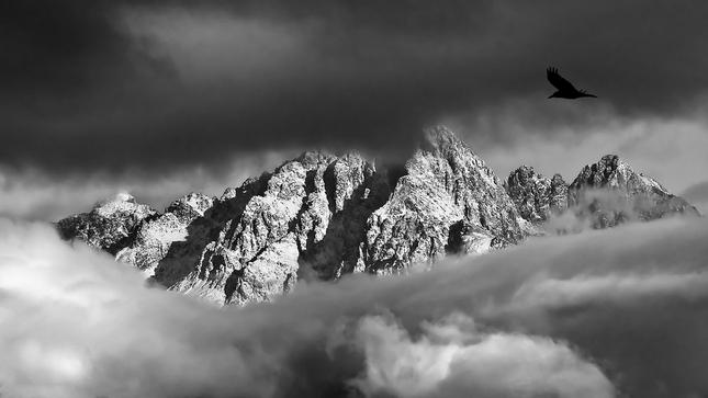 Strážca hôr