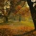krasna jesen...