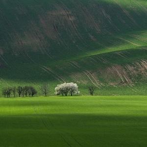 Moravské potešenie