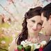 jedna dnesna svadobna :-)