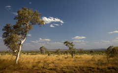 Aussie Outback 01