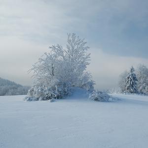 Ragvanovo - zima