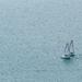 Sail-bótky